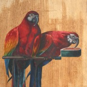 vintage parrot painting